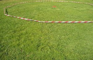 Longierkreis auf einer Wiese